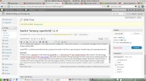 Firefox 4 beta 12 di openSUSE 11.4